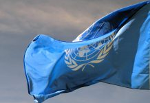 Nações Unidas pedem contenção à Rússia e Ucrânia sobre incidente com navios