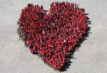 Coração gigante feito por portugueses e espanhóis em Penamacor