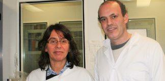 Paula Morais, coordenadora da investigação e Pedro Farias, primeiro autor do estudo, sobre origem das infeções hospitalares