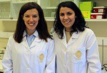 Cafeína protege células da retina. Ana Raquel Santiago, coordenadora e raquel Boia, primeira autor do estudo