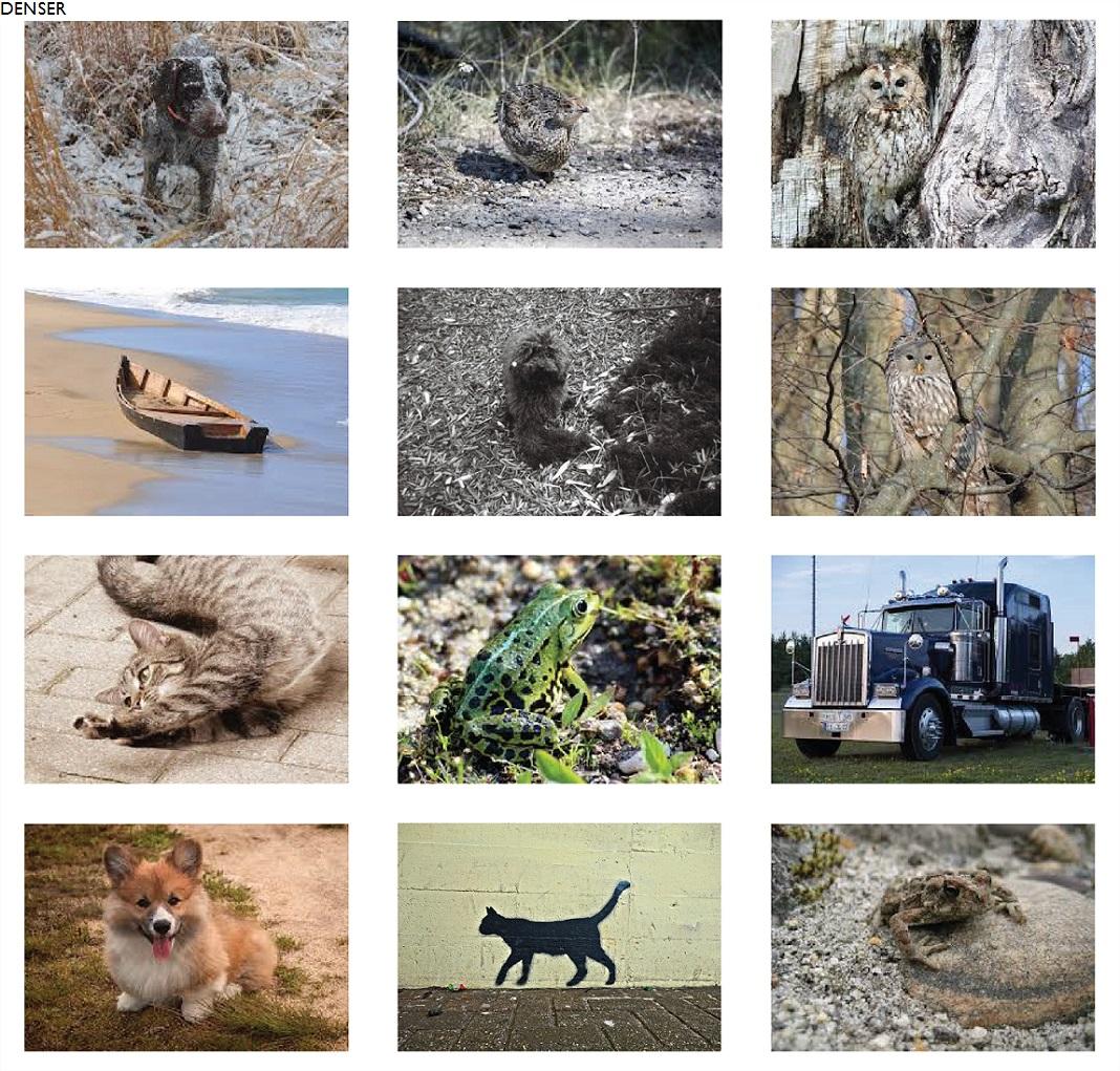 O objetivo do problema passa por identificar o conteúdo de cada imagem, dentro de um conjunto de classes pré-definidas (gato, cão, carro, camião, etc.). Na imagem exemplo, fazendo a leitura da esquerda para a direita e de cima para baixo, encontramos o seguinte conteúdo: cão; pássaro; pássaro; barco; cão; pássaro; gato; sapo; camião; cão; parede; sapo.