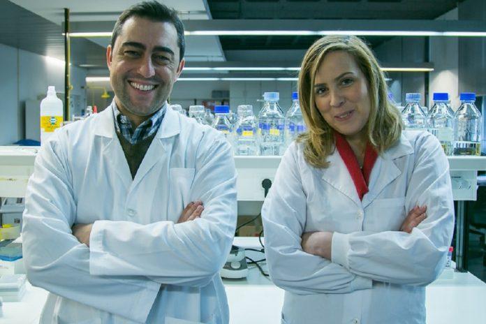Agostinho Carvalho e Cristina Cunha, do ICVS da UMinho