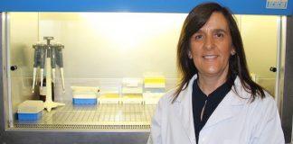 Bactéria H. pylori pode ser combatida com extrato de morangueiro selvagem