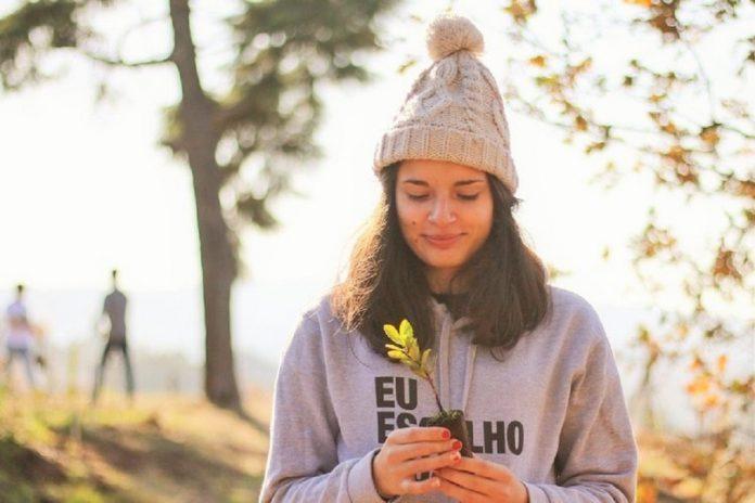 Estudantes da Universidade de Aveiro vão cuidar de árvores 'bebés' de viveiro