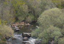 Escassez de água é já uma realidade em Portugal