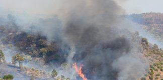Inteligência Artificial da IBM permite combate eficaz a incêndios