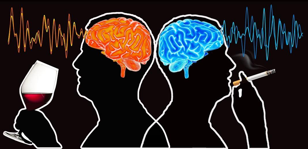 Descobertas as áreas do cérebro ligadas ao consumo de tabaco e de álcool