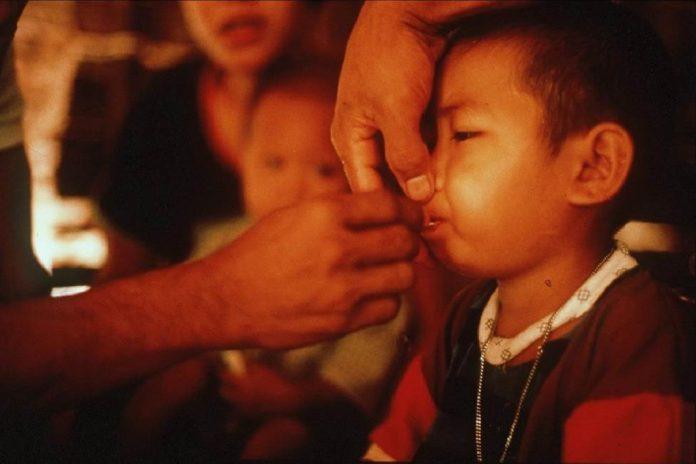 As artemisininas são o melhor medicamento contra a malária