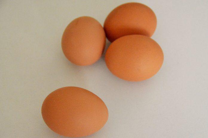 Consumo de um ovo por dia reduz risco de diabetes tipo 2