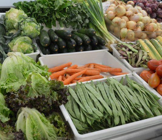 Dieta com frutas e legumes na proporção certa '5 por dia' favorece vida mais longa