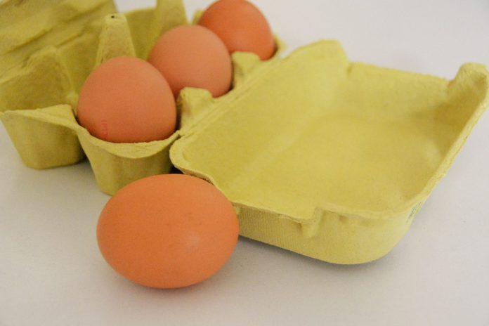 Consumo de ovos aumenta risco de diabetes