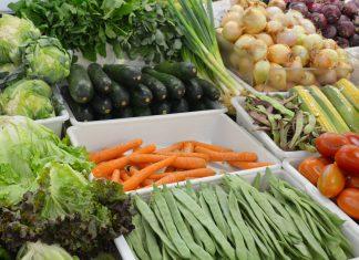 Dietas à base de plantas promovem envelhecimento saudável
