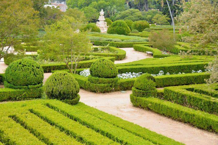 LisbonWeek 2019 arranca no Jardim Botânico da Ajuda