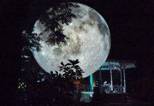 Oeiras recebe Museu da Lua nos jardins do Palácio Marquês de Pombal