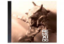 REMEXIDO: o novo álbum do trio João Lima, Carlos Ribeiro e João Dacosta