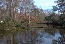 'Jennings 8': caso de mulheres assassinadas no Louisiana ainda não resolvido
