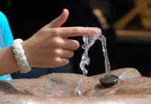 Antioxidantes protegem as células contra contaminantes nocivos da água