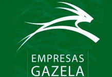 Empresas Gazela estimulam a economia da região centro