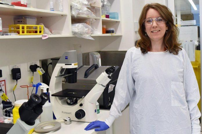 Nova vacina contra a tuberculose mostra eficácia