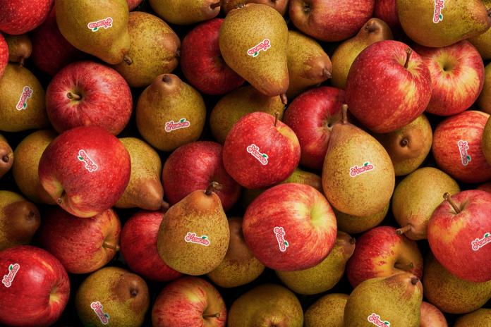 Na semana do Dia Mundial da Alimentação o alerta é para maior consumo de fruta