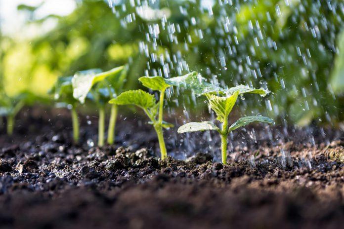 Agricultura Inteligente através do uso de Satélites com desenvolvimento do ISQ