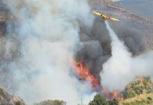 Dezanove projetos de Investigação em Fogos Florestais recebem apoio