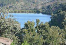Programa Revive Natureza aprovado pelo Governo inclui 96 imóveis