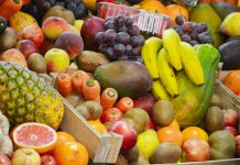 Leite, fruta e produtos hortícolas nas escolas, com fundos da UE
