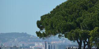 Academia Internacional de Turismo nasce no Estoril