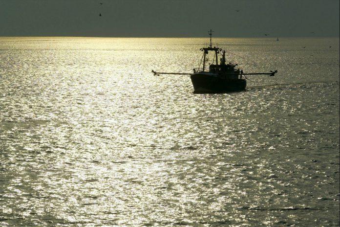 Pesca de bacalhau está proibida no mar Báltico oriental