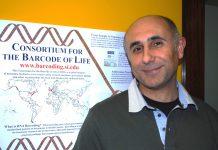 BIOSCAN: UMinho integra monitorização global da biodiversidade
