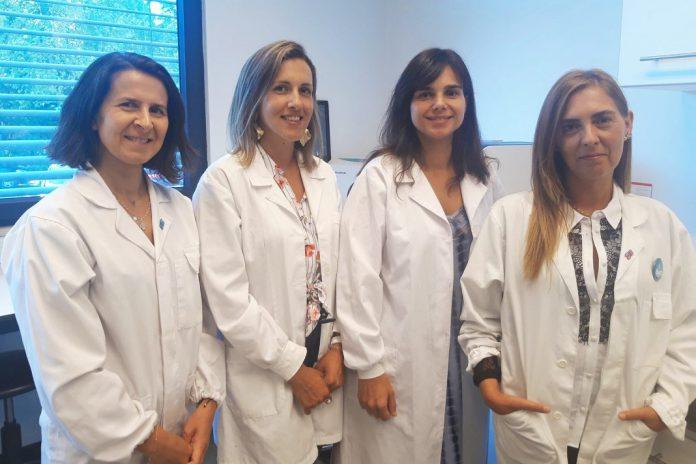 Cancro: Descoberta função de sequência de RNA implicada na divisão das células