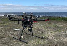Cientistas portugueses e noruegueses usam drones no estudo da biologia costeira