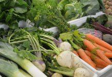 Dieta universal saudável uma necessidade mas difícil de consumir