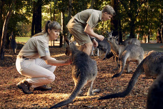 Os Irwin no seu dia-a-dia no Austrália Zoo: novos episódios no Discovery