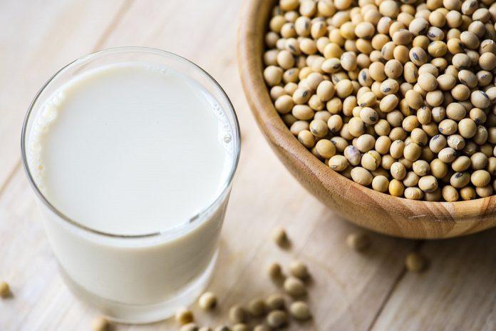 Soja geneticamente modificada autorizada para alimentação humana e animal