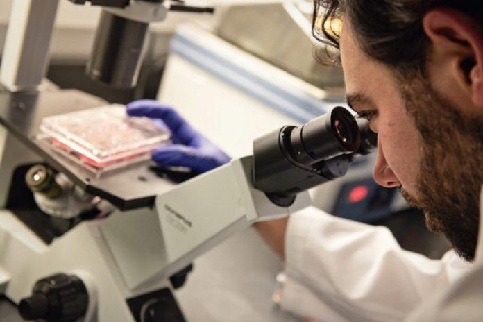 Medicamentos para tratar o cancro da próstata podem tratar a COVID-19