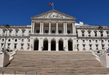 PSD apresenta no Parlamento proposta de Lei de Bases do Clima