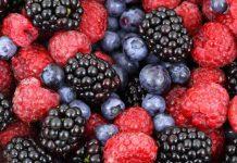 Fruta e chá podem proteger da doença de Alzheimer