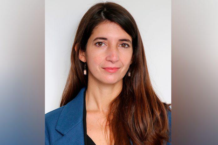 Teresa Castanho, Investigadora na área do Envelhecimento Cognitivo e Demências