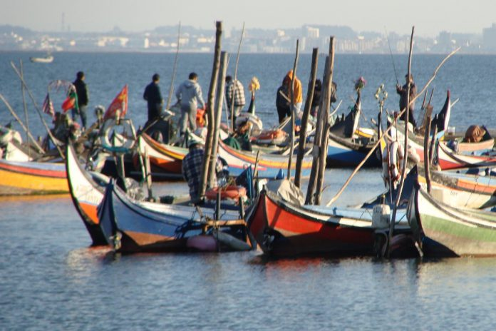 COVID-19: Conselho Europeu aprova assistência financeira aos pescadores