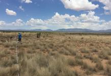 Estudo luso-espanhol auxilia nas medidas para proteger biodiversidade do solo