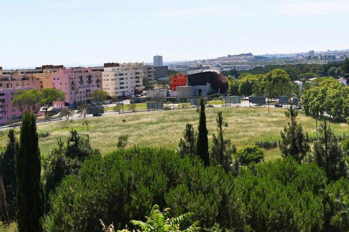 Câmara de Lisboa quer levar habitação acessível para o Alto do Restelo