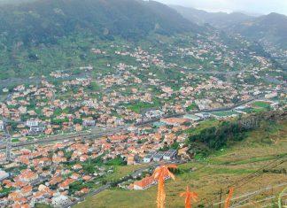 Comissão Europeia aprova apoio de 275.000 euros ao setor da cana-de-açúcar na Madeira