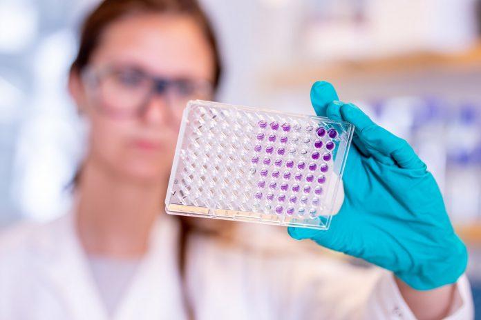 Vacina COVID-19 da AstraZeneca é eficaz em pessoas com 65 e mais anos