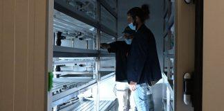 Campus da Nova SBE com Bios Urban Farm para produção de vegetais
