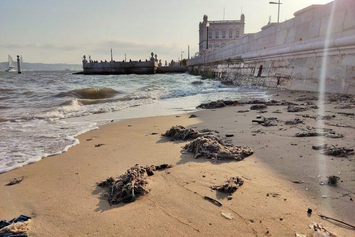 """PAN/Lisboa denuncia """"onda"""" de resíduos no rio Tejo"""