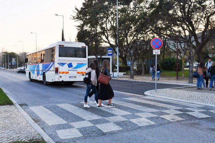 Município de Torres Vedras atribui passes gratuitos aos alunos do ensino secundário
