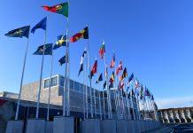 Área da transplantação deve ser prioridade na presidência portuguesa da União Europeia
