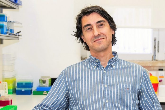 """""""Medicamento órfão"""": nanoparticula para combate ao cancro desenvolvida em Coimbra"""